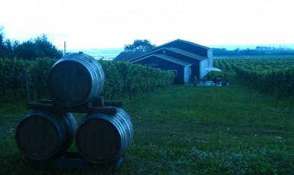 Nova Scotia Wine Tour 2013